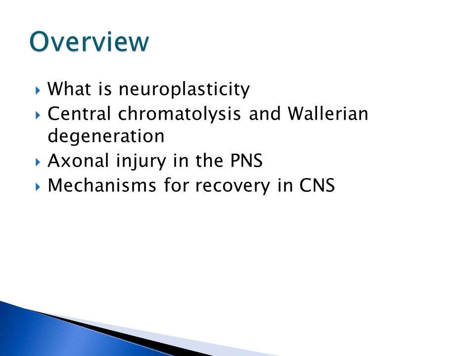  Be able to discuss cellular processes after injury (central chromatolysis & Wallerian degeneration)  Be able to name and discuss two mechanisms of sprouting in the PNS  Be able to name and discuss four mechanisms for synaptic recovery in the CNS  Be able to explain why there is no repair of damaged axons in the CNS