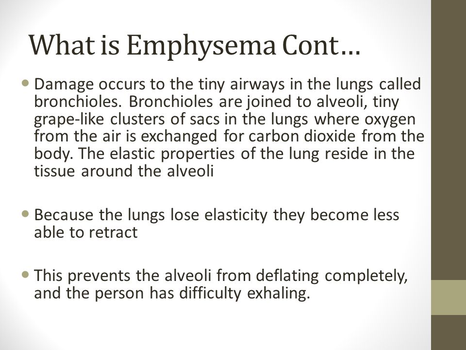 What is Emphysema Cont… Damage occurs to the tiny airways in the lungs called bronchioles. Bronchioles are joined to alveoli, tiny grape-like clusters
