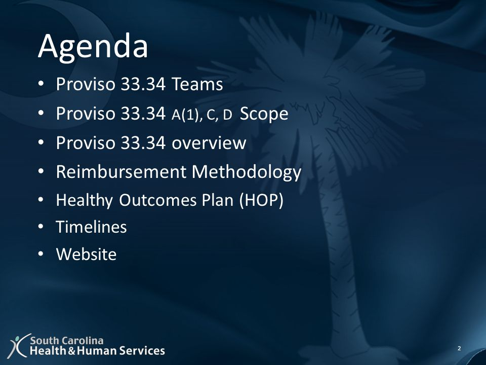 Agenda Proviso 33.34 Teams Proviso 33.34 A(1), C, D Scope Proviso 33.34 overview Reimbursement Methodology Healthy Outcomes Plan (HOP) Timelines Website 2