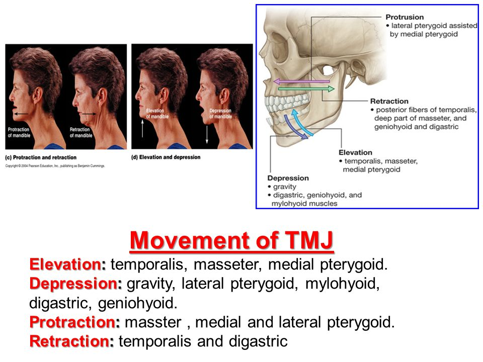 Movement of TMJ Elevation: Elevation: temporalis, masseter, medial pterygoid. Depression: Depression: gravity, lateral pterygoid, mylohyoid, digastric