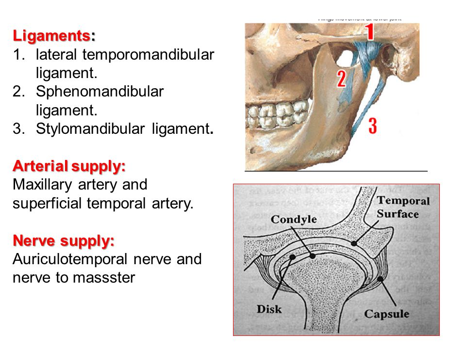 Ligaments: 1.lateral temporomandibular ligament. 2.Sphenomandibular ligament. 3.Stylomandibular ligament. Arterial supply: Maxillary artery and superf