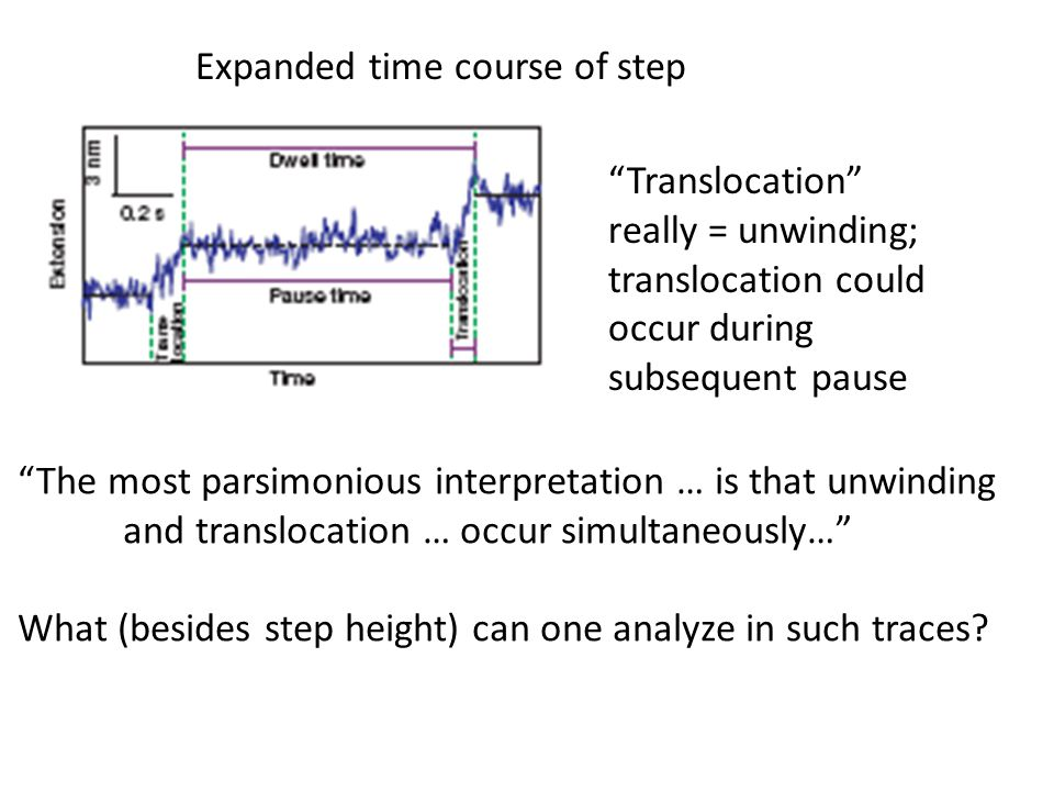 """Translocation"" really = unwinding; translocation could occur during subsequent pause Expanded time course of step ""The most parsimonious interpretati"