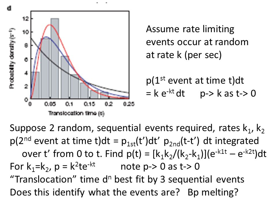 Assume rate limiting events occur at random at rate k (per sec) p(1 st event at time t)dt = k e -kt dt p-> k as t-> 0 Suppose 2 random, sequential eve