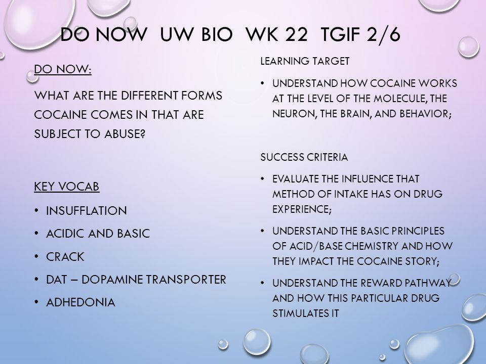 DO NOW UW BIO WK 22 TGIF 2/6 DO NOW: WHAT ARE THE DIFFERENT FORMS COCAINE COMES IN THAT ARE SUBJECT TO ABUSE.