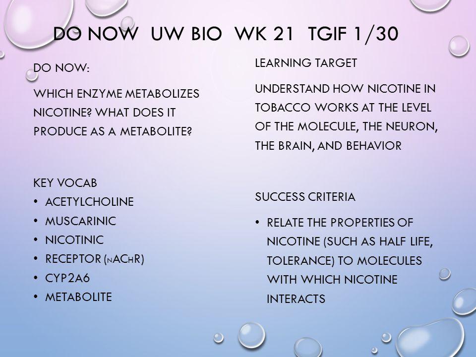 DO NOW UW BIO WK 21 TGIF 1/30 DO NOW: WHICH ENZYME METABOLIZES NICOTINE.