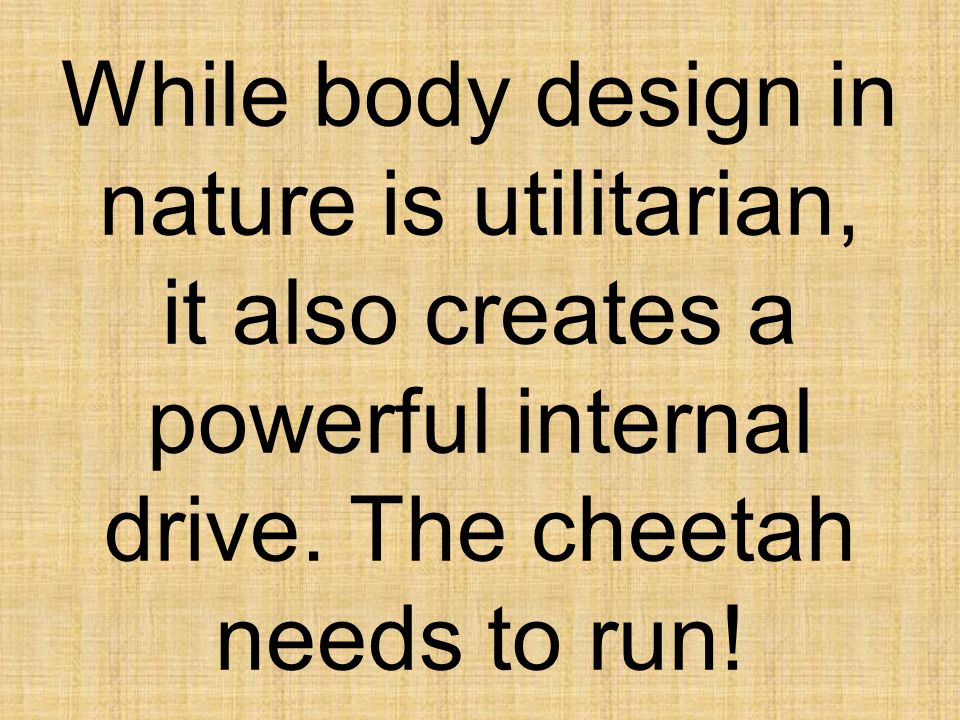 While body design in nature is utilitarian, it also creates a powerful internal drive.