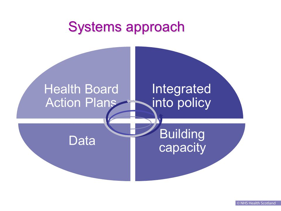 Systems approach Integrated into policy Building capacity Data Health Board Action Plans