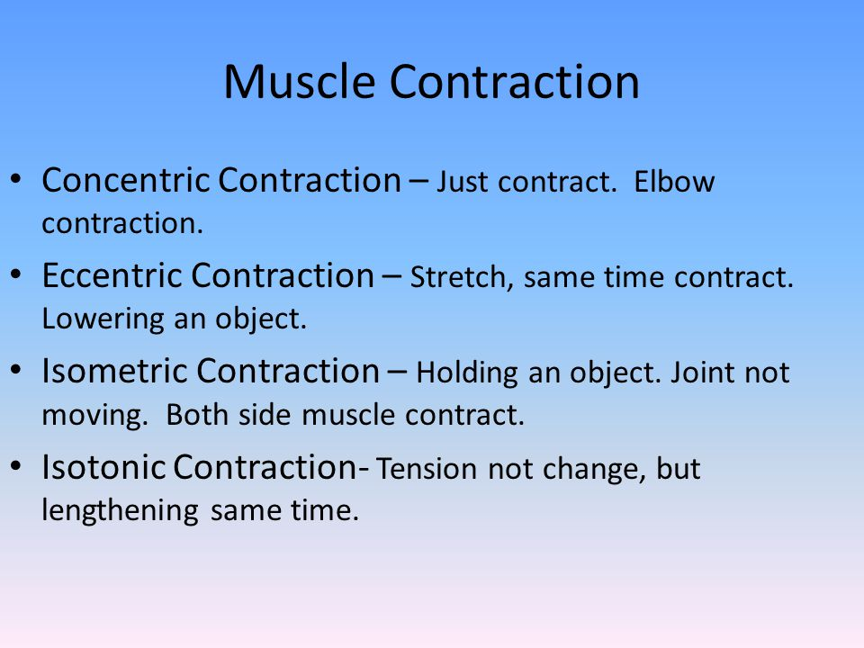Muscle Contraction Concentric Contraction – Just contract. Elbow contraction. Eccentric Contraction – Stretch, same time contract. Lowering an object.