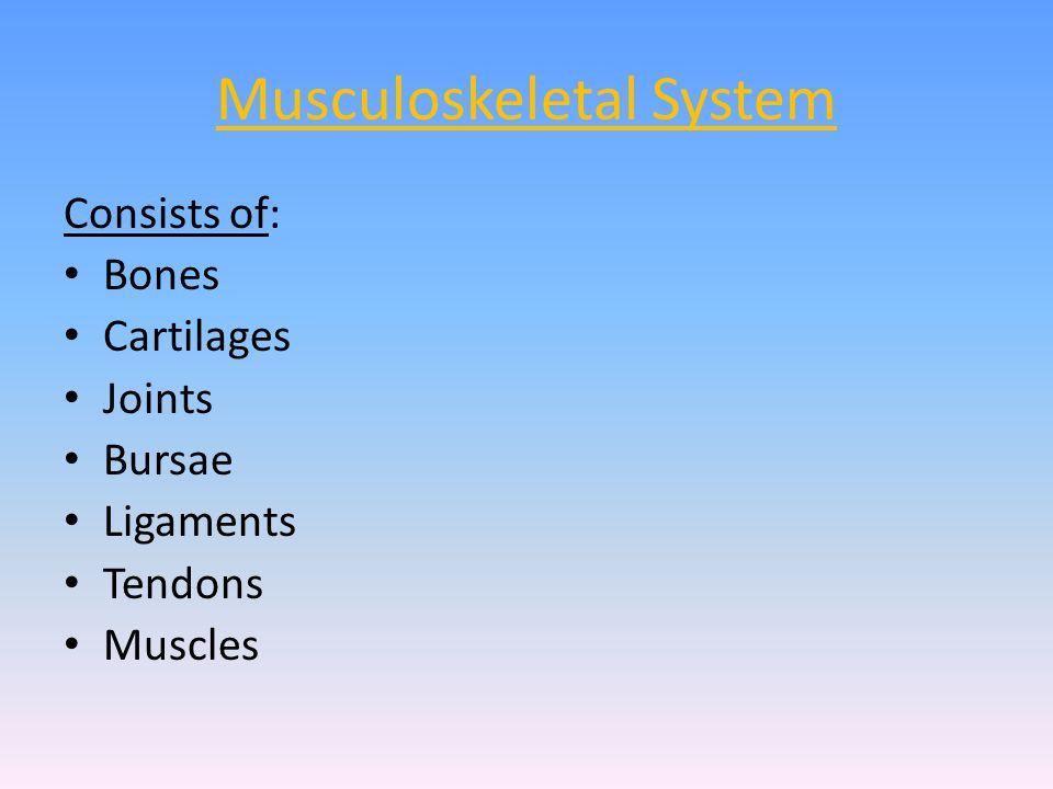 vastus-medialis Origin: Medial surface of femur (lower intertrochanteric line, spiral line, medial linea aspera & medial intermuscular septum) End: Medial patella (via ligamentum patellae into tubercle of tibia) Actions: Knee extension