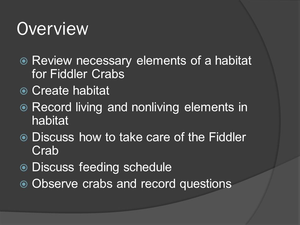 Overview  Review necessary elements of a habitat for Fiddler Crabs  Create habitat  Record living and nonliving elements in habitat  Discuss how t