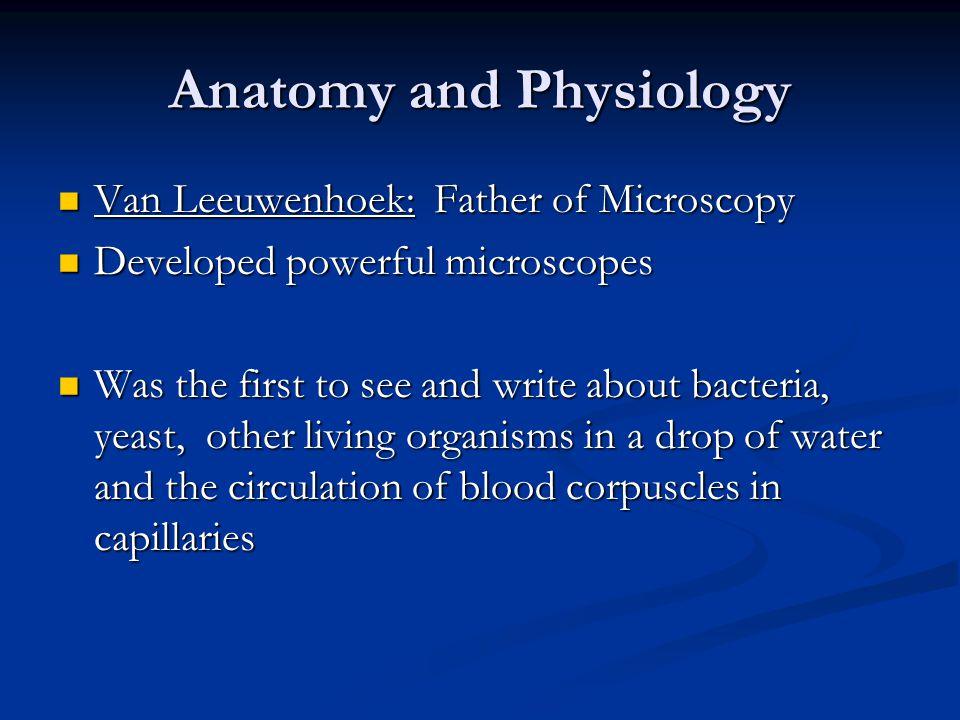 Anatomy and Physiology Van Leeuwenhoek: Father of Microscopy Van Leeuwenhoek: Father of Microscopy Developed powerful microscopes Developed powerful m