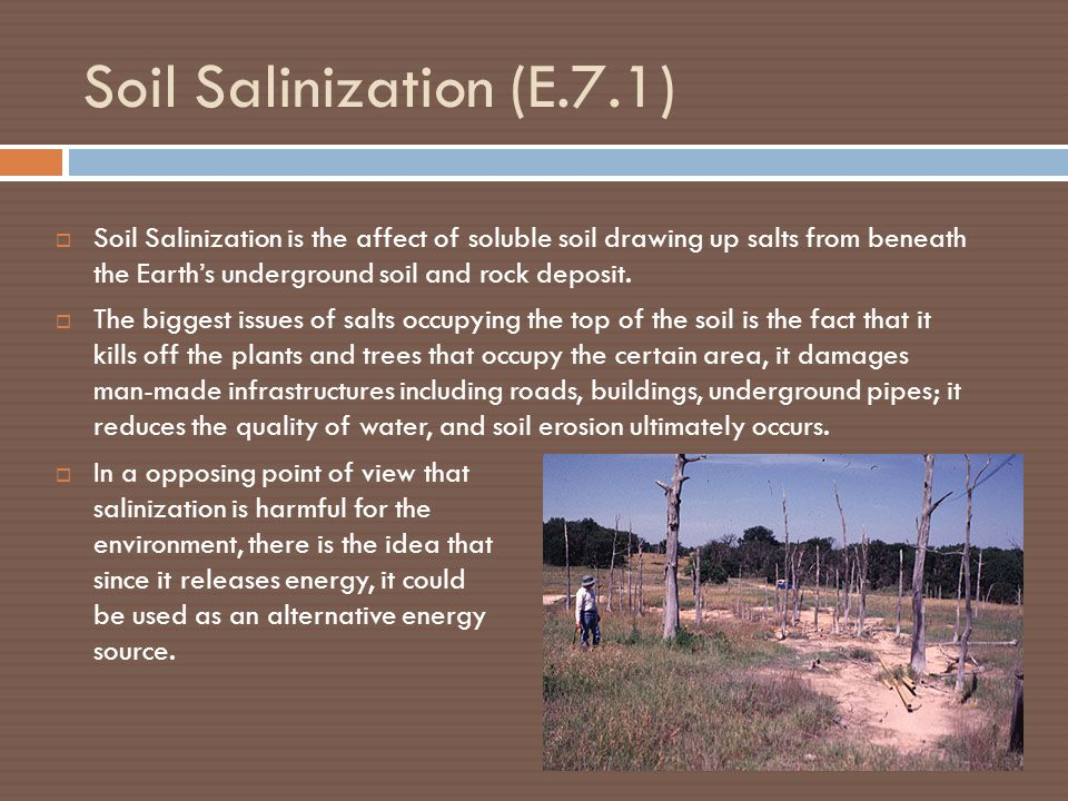 Soil Salinization (E.7.1)  Soil Salinization is the affect of soluble soil drawing up salts from beneath the Earth's underground soil and rock deposit.