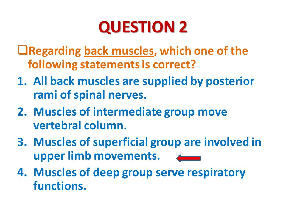 QUESTION 2  Regarding back muscles, which one of the following statements is correct? 1.All back muscles are supplied by posterior rami of spinal ner
