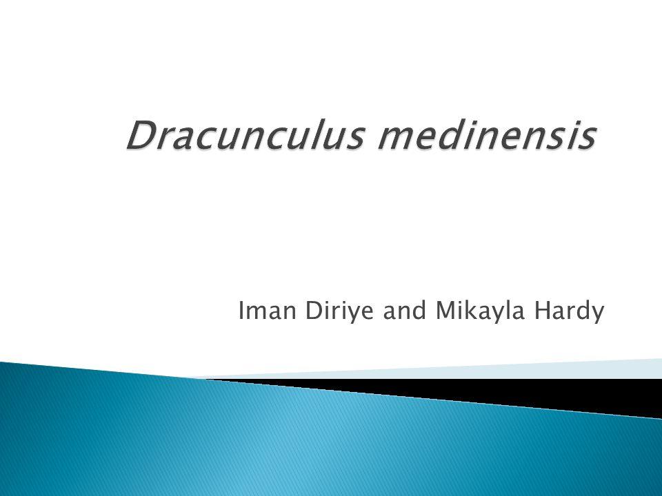 Iman Diriye and Mikayla Hardy