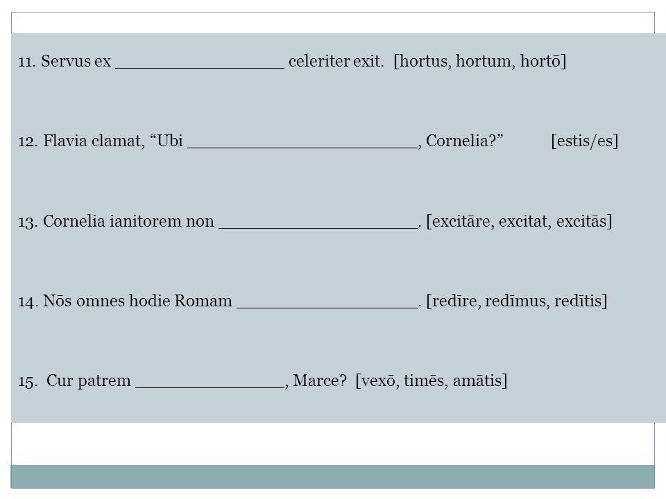 11.Servus ex celeriter exit.