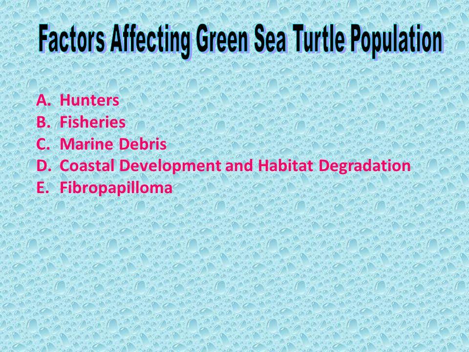 A.Hunters B.Fisheries C.Marine Debris D.Coastal Development and Habitat Degradation E.Fibropapilloma