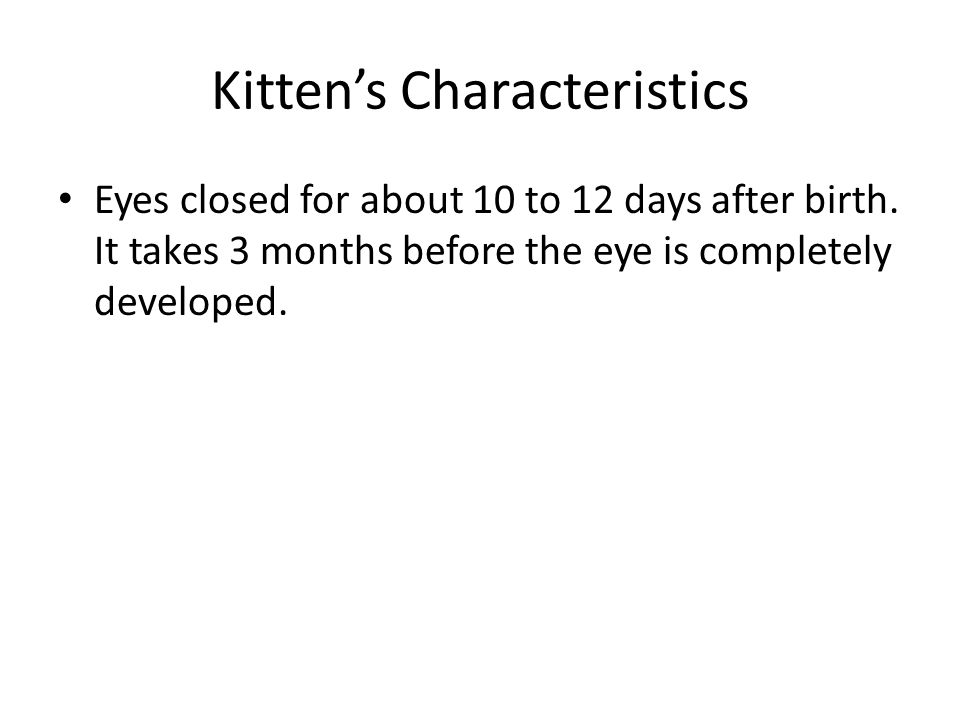 Kitten's Characteristics Eyes closed for about 10 to 12 days after birth.