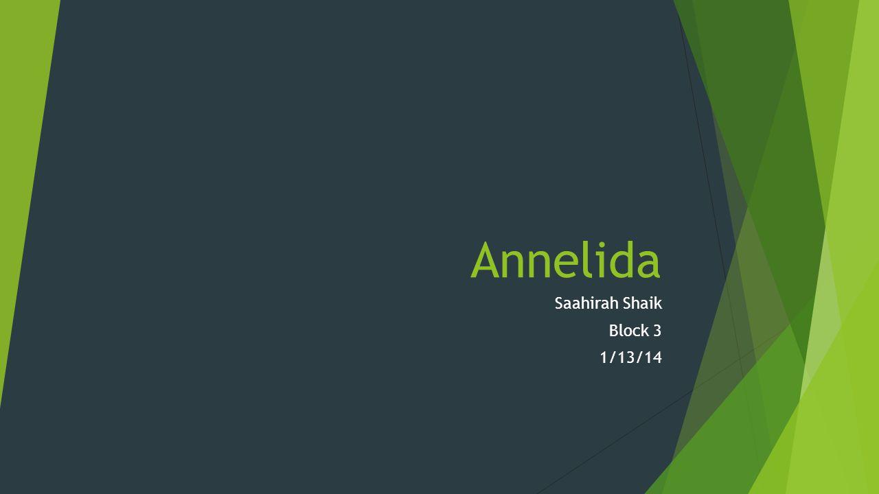 Annelida Saahirah Shaik Block 3 1/13/14