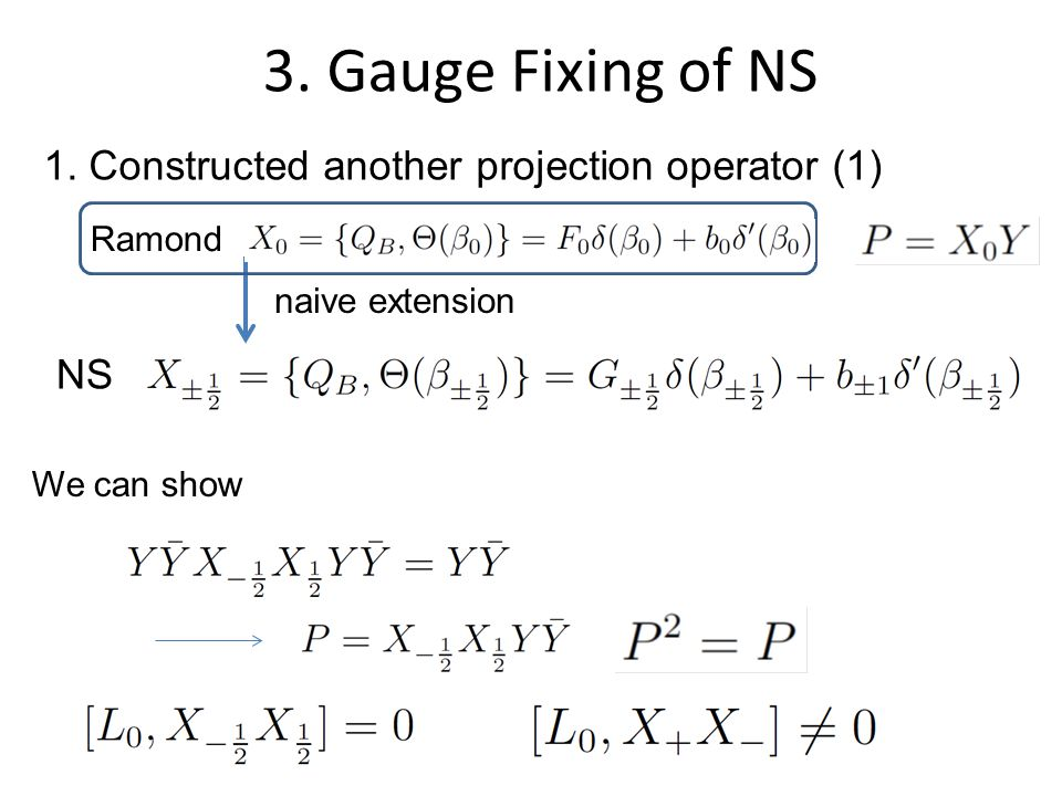 3. Gauge Fixing of NS 1.