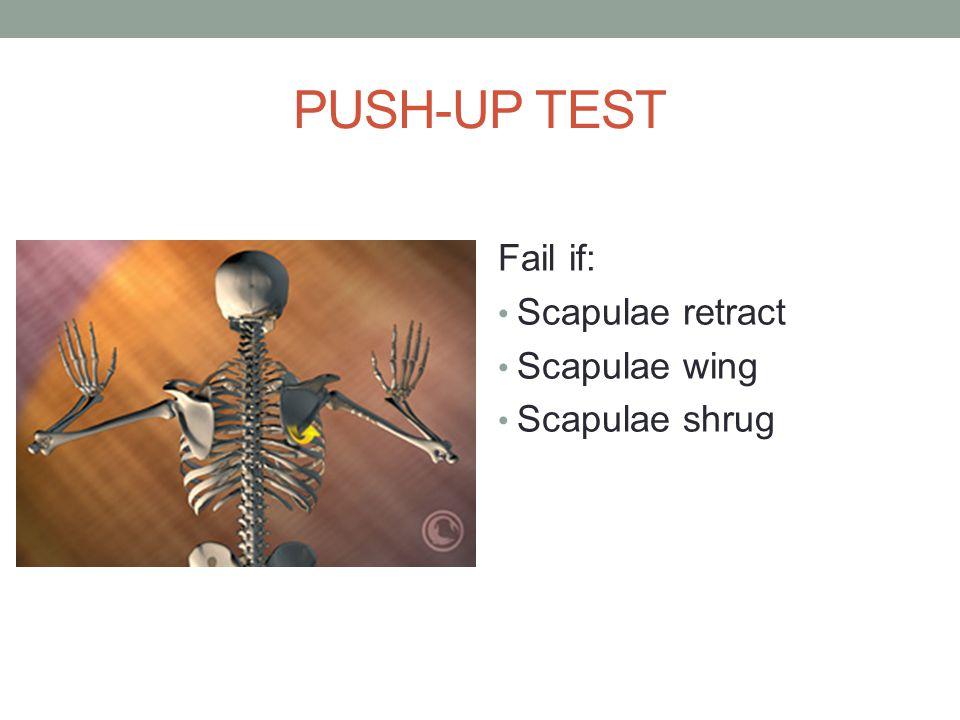 PUSH-UP TEST Fail if: Scapulae retract Scapulae wing Scapulae shrug