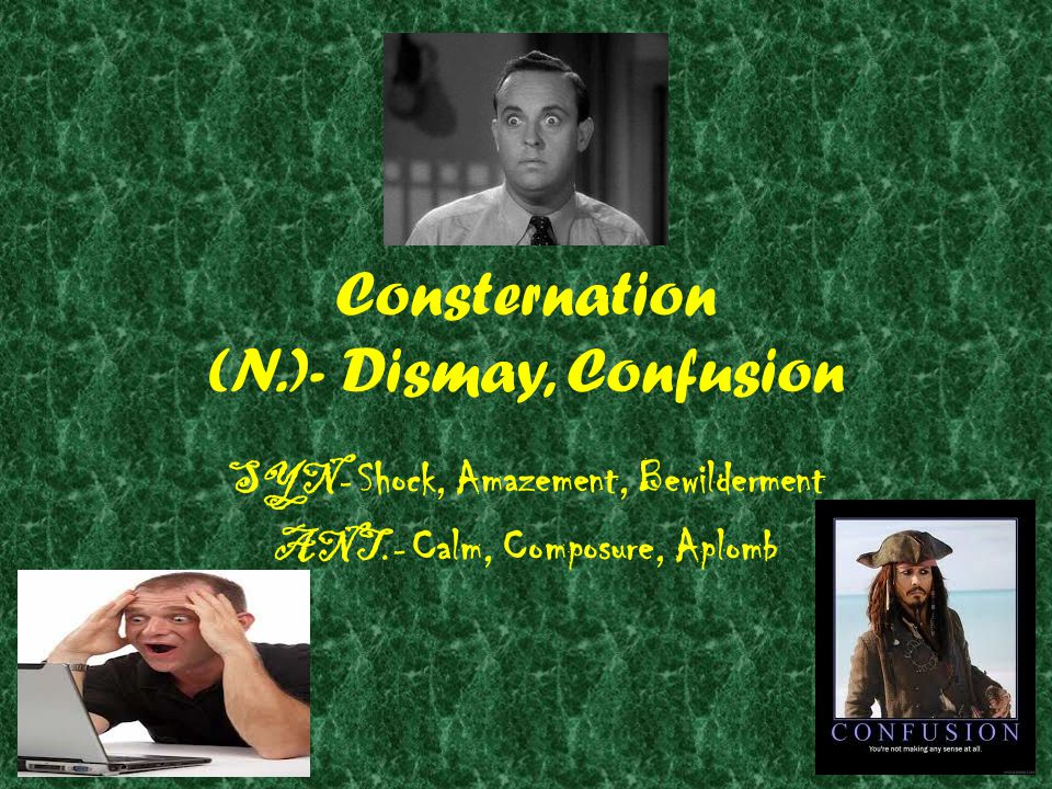 Consternation (N.)- Dismay, Confusion SYN- Shock, Amazement, Bewilderment ANT.- Calm, Composure, Aplomb