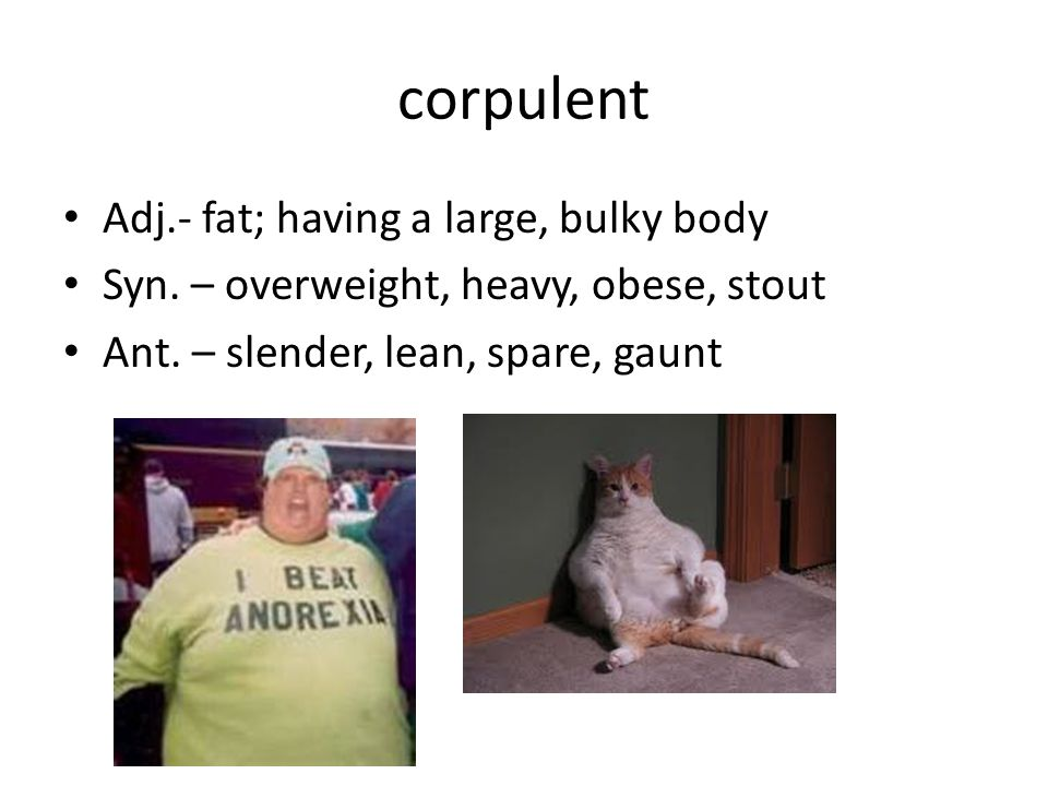 corpulent Adj.- fat; having a large, bulky body Syn.