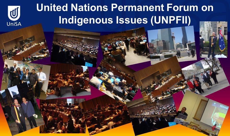 United Nations Permanent Forum on Indigenous Issues (UNPFII)