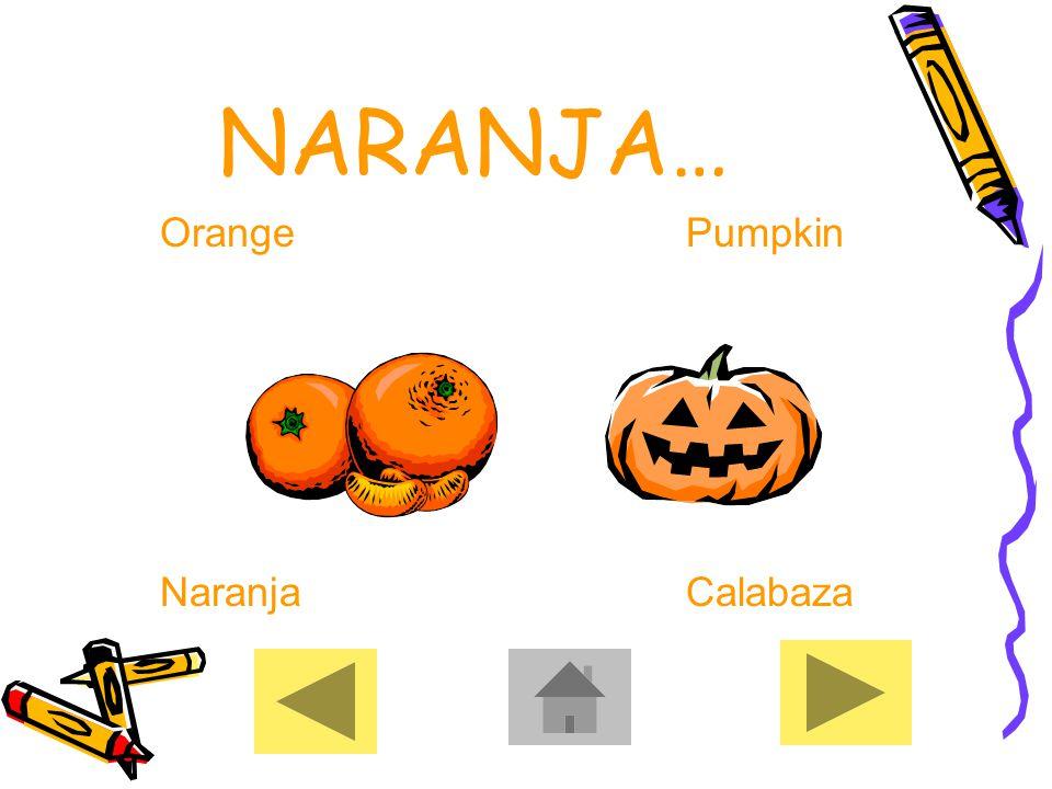 NARANJA… OrangePumpkin NaranjaCalabaza