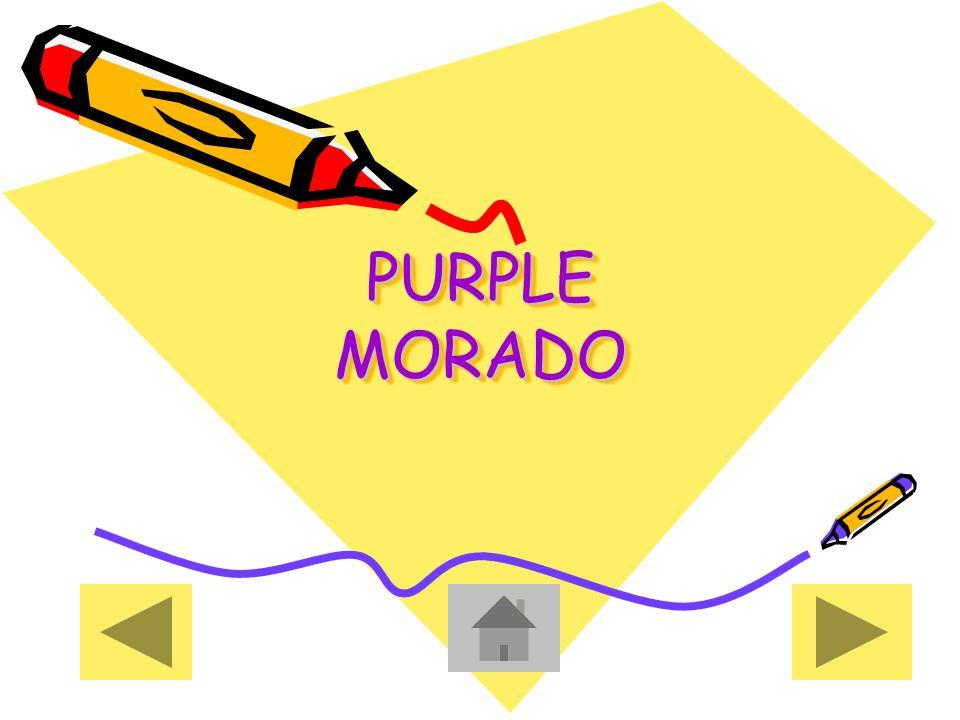 PURPLE MORADO