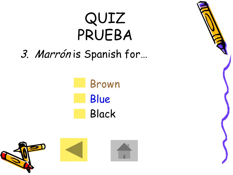 QUIZ PRUEBA 3.Marrón is Spanish for… Brown Blue Black