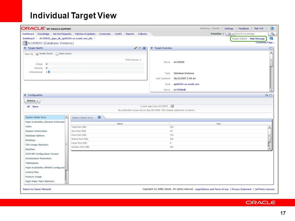 17 Individual Target View