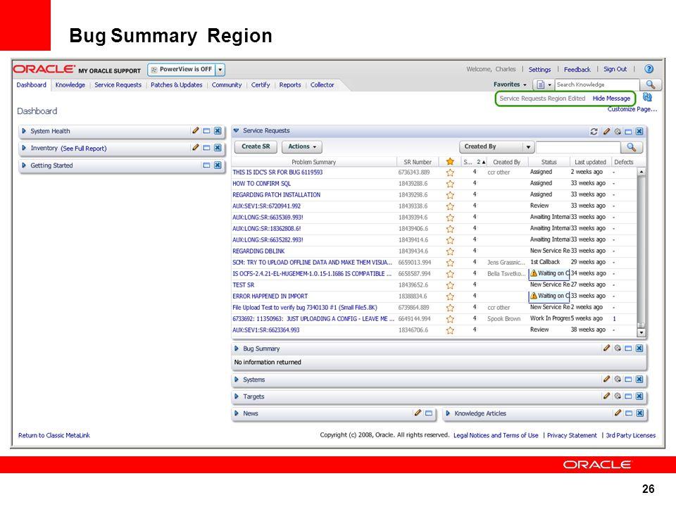26 Bug Summary Region