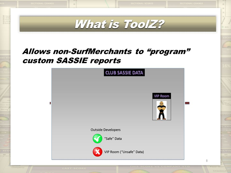 What is ToolZ 8 Allows non-SurfMerchants to program custom SASSIE reports