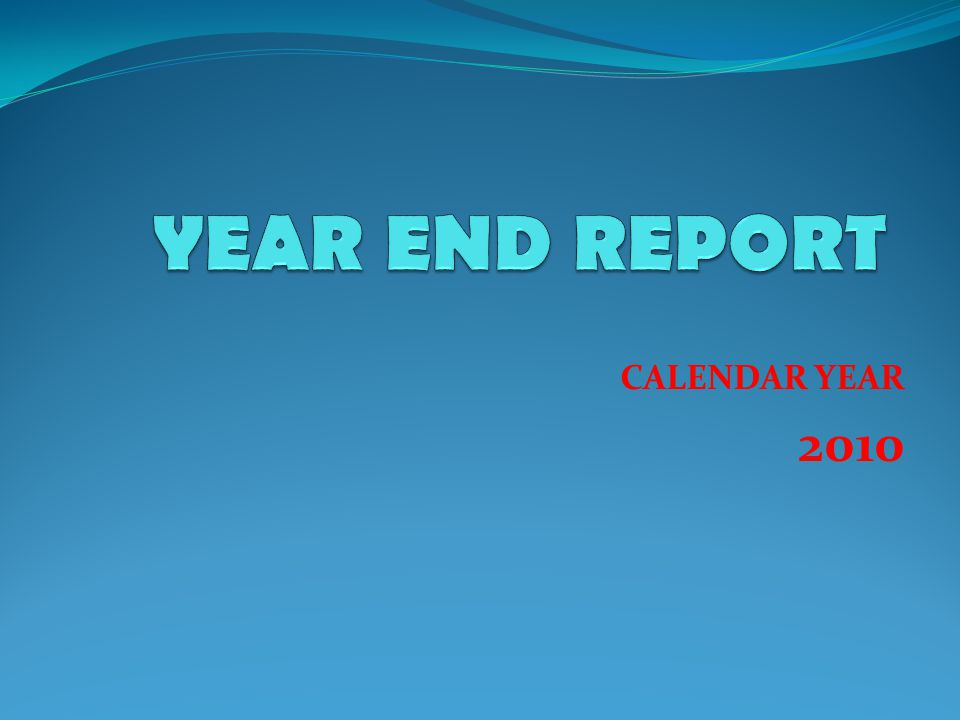 CALENDAR YEAR 2010