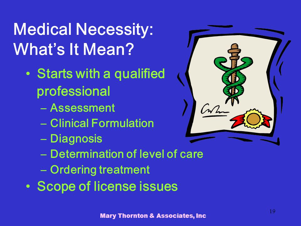 Mary Thornton & Associates, Inc 19 Medical Necessity: What's It Mean.