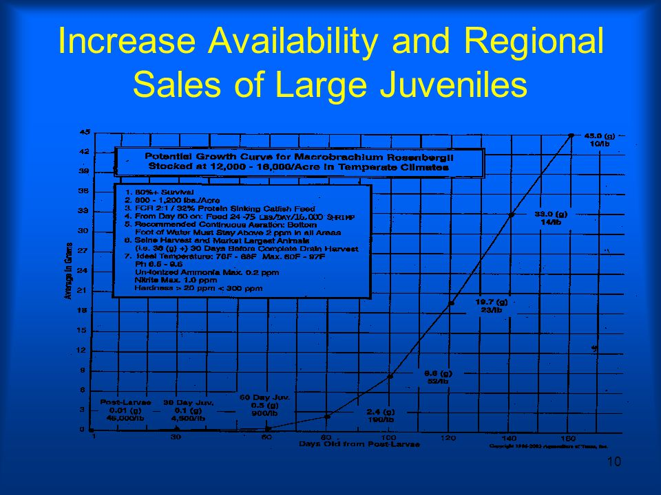 10 Increase Availability and Regional Sales of Large Juveniles