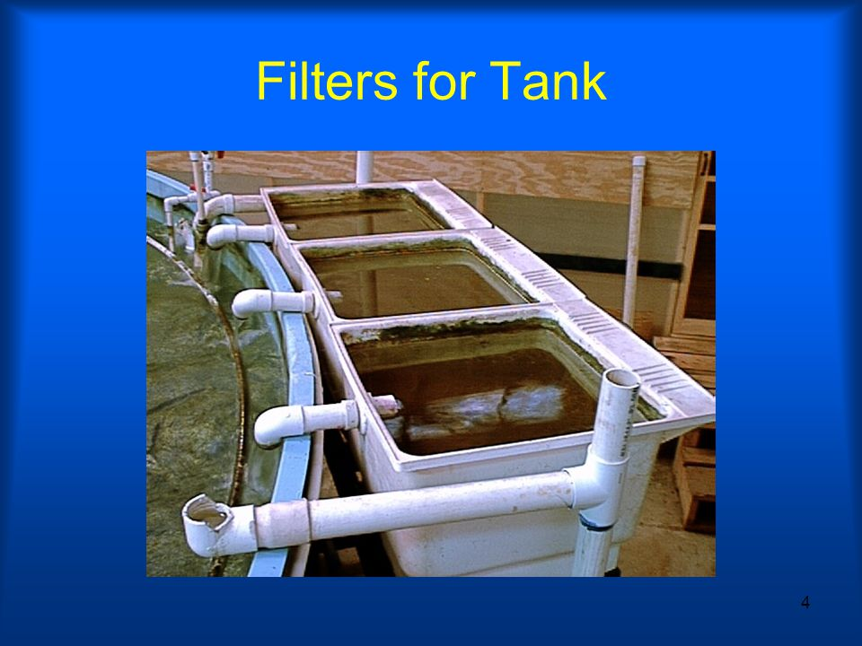4 Filters for Tank