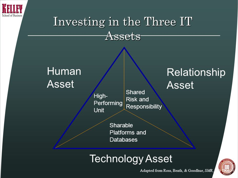 Investing in the Three IT Assets Human Asset Relationship Asset Technology Asset High- Performing Unit Sharable Platforms and Databases Shared Risk an