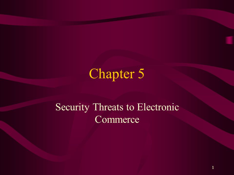 1 Chapter 5 Security Threats to Electronic Commerce