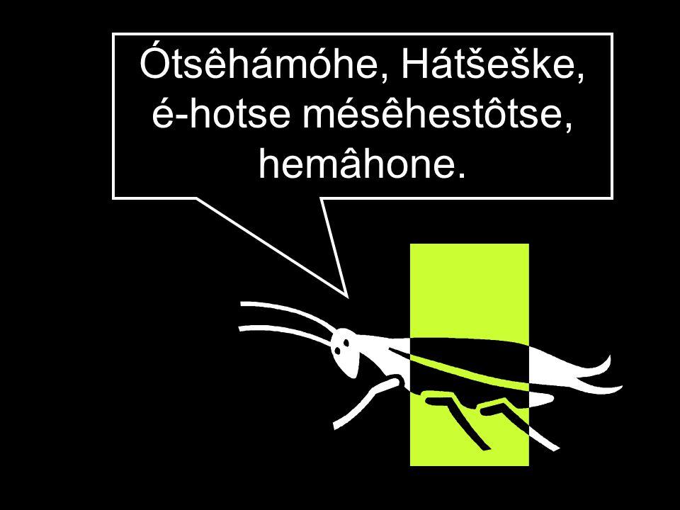 Ótsêhámóhe, Hátšeške, é-hotse mésêhestôtse, hemâhone.