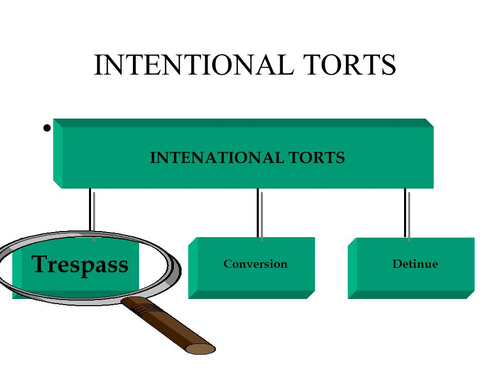 THE LAW OF TORTS Defences to Intentional Torts