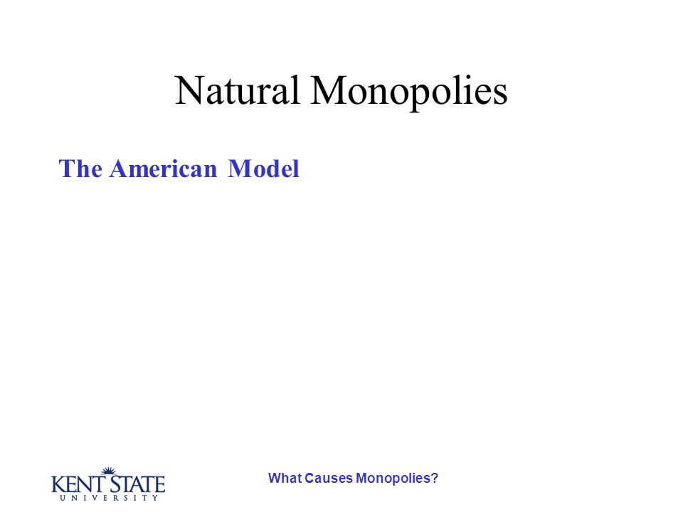What Causes Monopolies? Natural Monopolies The American Model