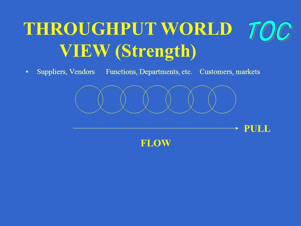 THROUGHPUT WORLD VIEW (Strength) Suppliers, Vendors Functions, Departments, etc.