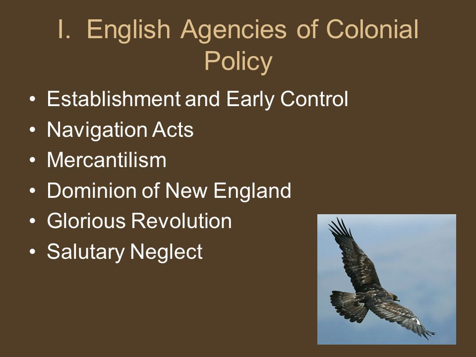 I. English Agencies of Colonial Policy Establishment and Early Control Navigation Acts Mercantilism Dominion of New England Glorious Revolution Saluta