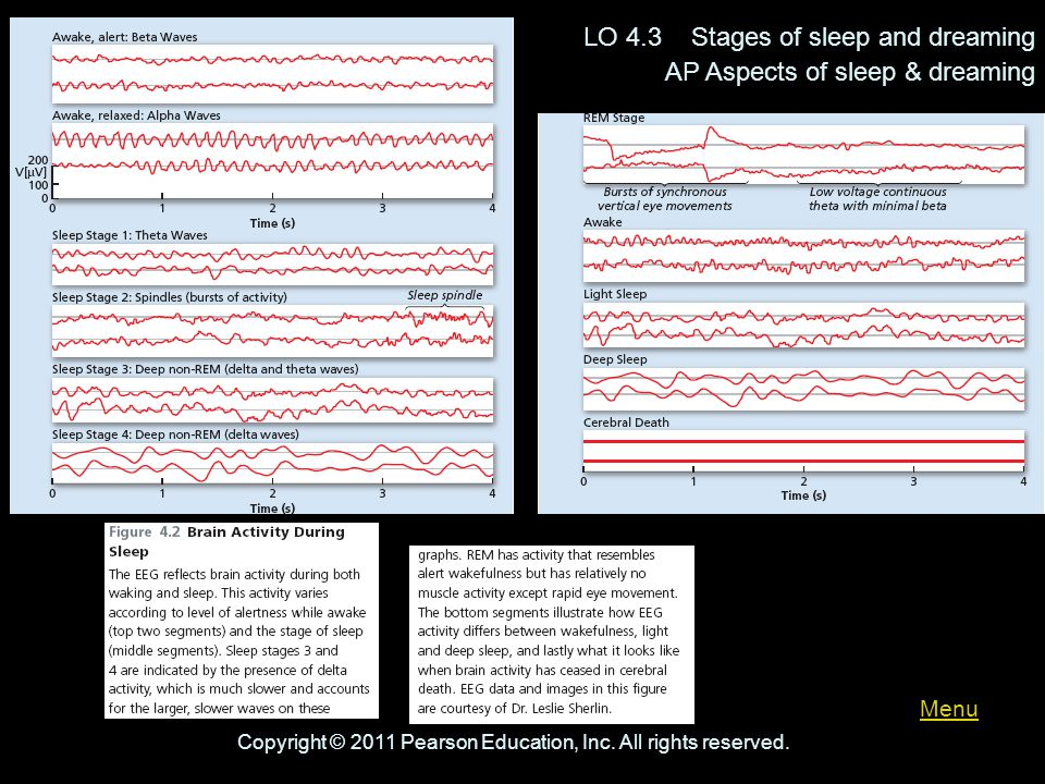Menu LO 4.3 Stages of sleep and dreaming AP Aspects of sleep & dreaming Copyright © 2011 Pearson Education, Inc. All rights reserved.