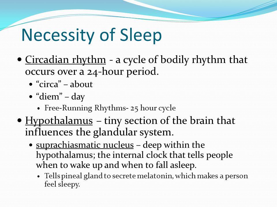 """Necessity of Sleep Circadian rhythm - a cycle of bodily rhythm that occurs over a 24-hour period. """"circa"""" – about """"diem"""" – day Free-Running Rhythms- 2"""