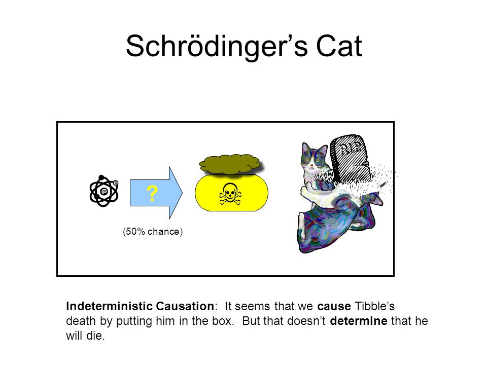 Schrödinger's Cat ? (50% chance) Indeterministic Causation: It seems that we cause Tibble's death by putting him in the box. But that doesn't determin