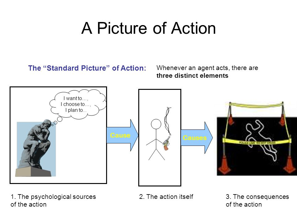"""A Picture of Action 1. The psychological sources of the action I want to…, I choose to…, I plan to... Cause 2. The action itself The """"Standard Picture"""