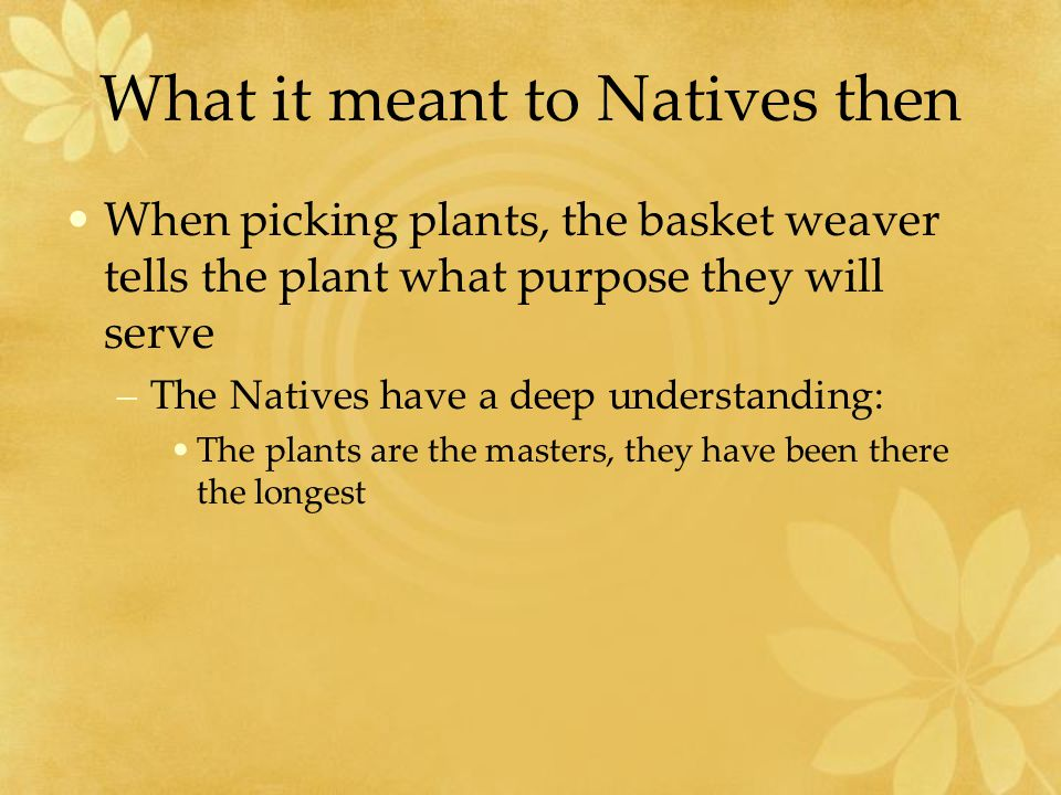 What it meant to Natives then When picking plants, the basket weaver tells the plant what purpose they will serve –The Natives have a deep understanding: The plants are the masters, they have been there the longest