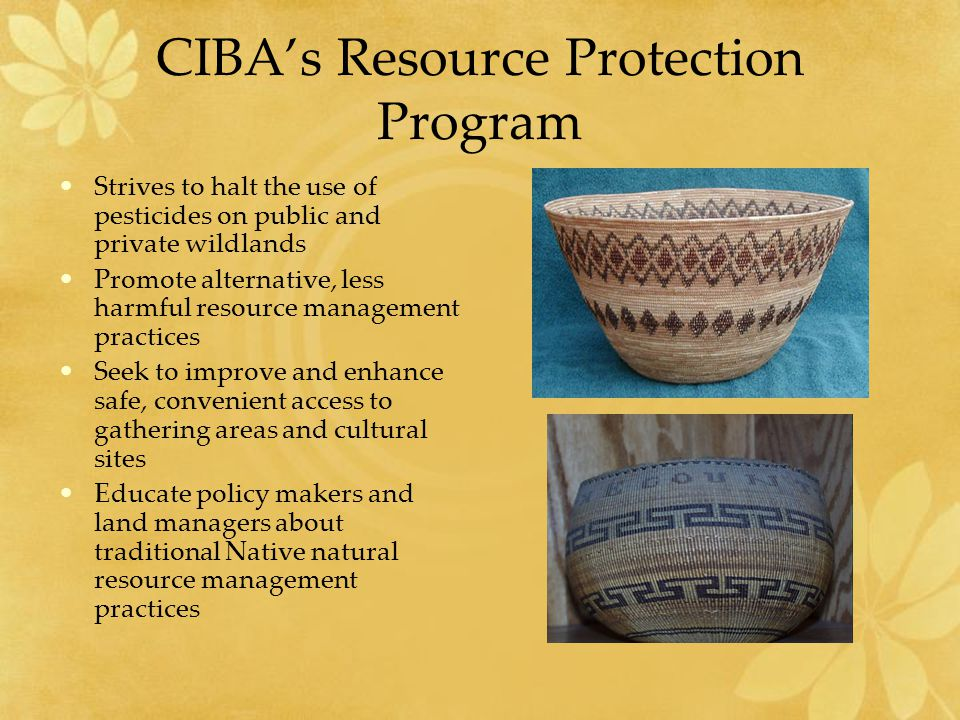 CIBA's Resource Protection Program Strives to halt the use of pesticides on public and private wildlands Promote alternative, less harmful resource management practices Seek to improve and enhance safe, convenient access to gathering areas and cultural sites Educate policy makers and land managers about traditional Native natural resource management practices
